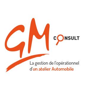 300x300-GM Consult logo